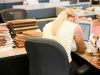 ¿Cómo un mal ambiente laboral puede reducir tu calidad de vida?