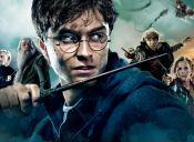 El amor por Harry Potter: Pareja se casó con motivos del joven mago