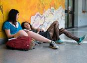 Gratuidad 2016: Mineduc abrirá nuevo proceso de postulación para rezagados