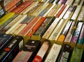 Asiste a la XXV versión de la Feria del Libro Usado dedicada al escritor Luis Rivano