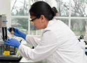 ¿Eres científica? Abren postulaciones a millonario premio para tesis de doctorado