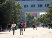 Pese a cumplir con los requisitos, más de 700 alumnos de la UdeC decidieron no postular a la gratuidad