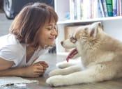 15 cosas que solo entenderás si eres el animalista de tu grupo de amigos