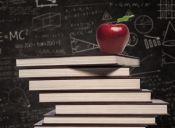Becas en Pedagogía: ¿mejorando la calidad de la educación?