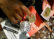 Estudio: Un 65% de los chilenos piensa que la marihuana debe ser considerada una droga blanda