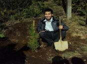 ¡Planta un árbol! Formas de celebrar el día del planeta