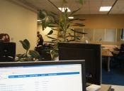 9 actividades que harán de una oficina un lugar mejor