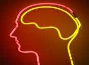 Así tu cerebro puede arruinar el éxito profesional
