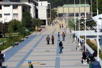 Reforma a la educación superior propone abrir el CRUCH a nuevas universidades