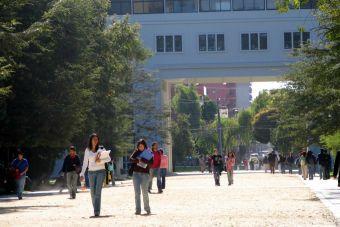 ¿Conviene estudiar traducción?