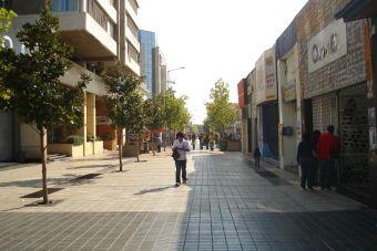 Cámara de Diputados aprueba la creación de universidades estatales en O'Higgins y Aysén