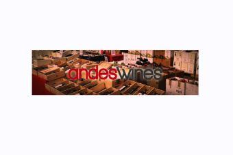 Andes Wines expande su rubro y busca inversionistas