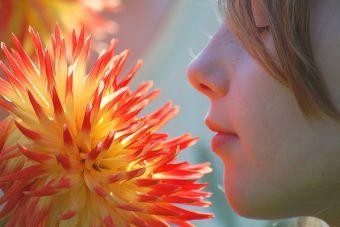 Escuelas espirituales y ecológicas: profesores que rompen límites