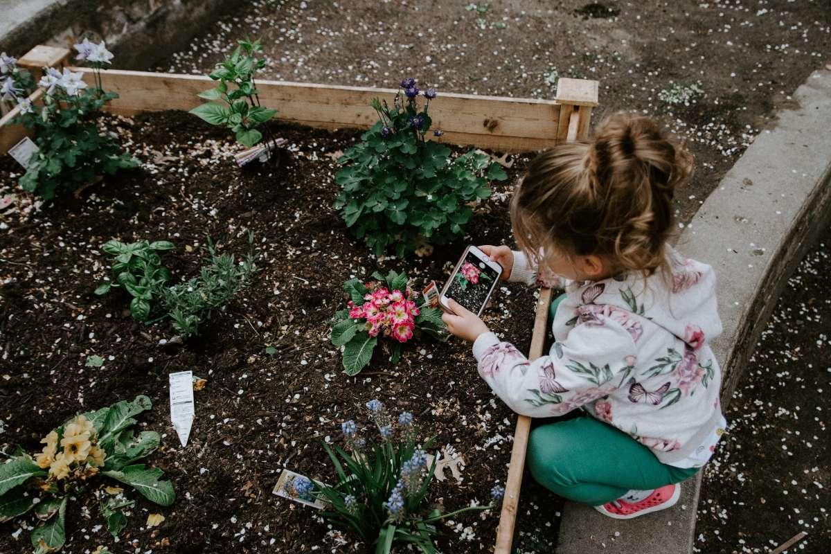 huerto para niños