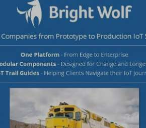 Bright Wolf cover image