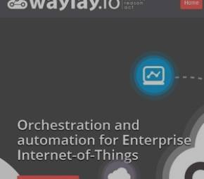 waylay cover image