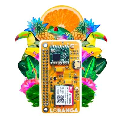 Loranga, a board that can turn any Raspberry Pi into a low power IoT gateway cover image