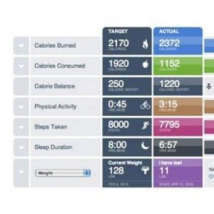 App interface for Bodymedia Link fit armband