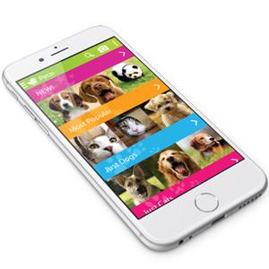 Petzila App