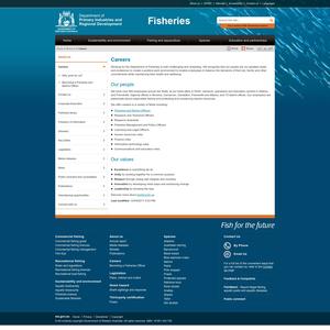 Smart Shark Monitoring System Careers