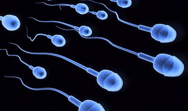 How to Improve Sperm Health