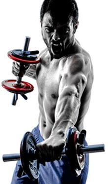 Muscle Building With TestRX Pills