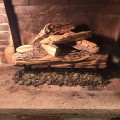 Logs placed and ready to fire it up!