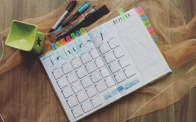 What to be checking after the first month