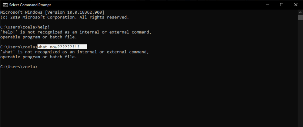 Cover image for The Command Line for First-Timers