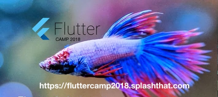 Flutter: Learning Resources for Beginners - DEV Community