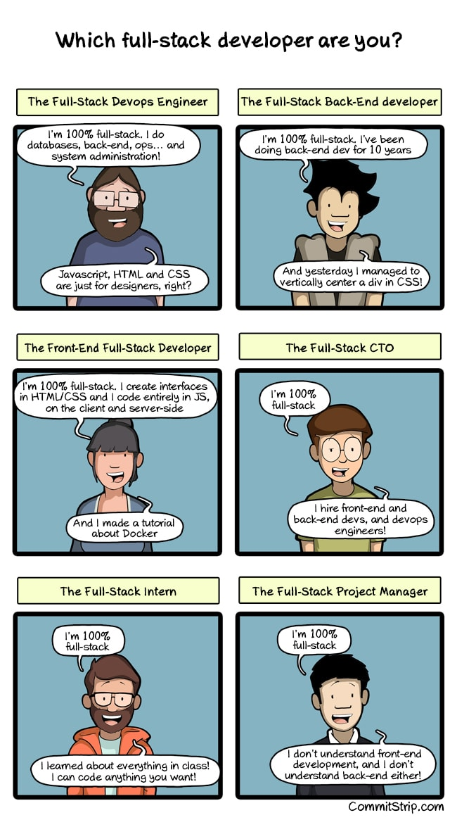 which full stack developer are you