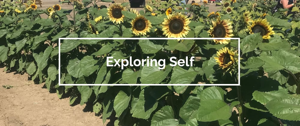 Cover image for Exploring Self