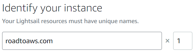Instance name