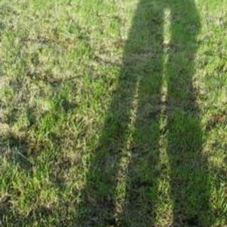 allforabit profile picture