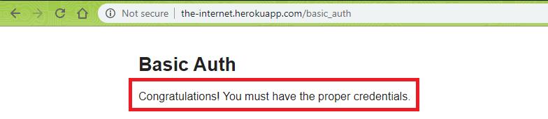 basic-auth