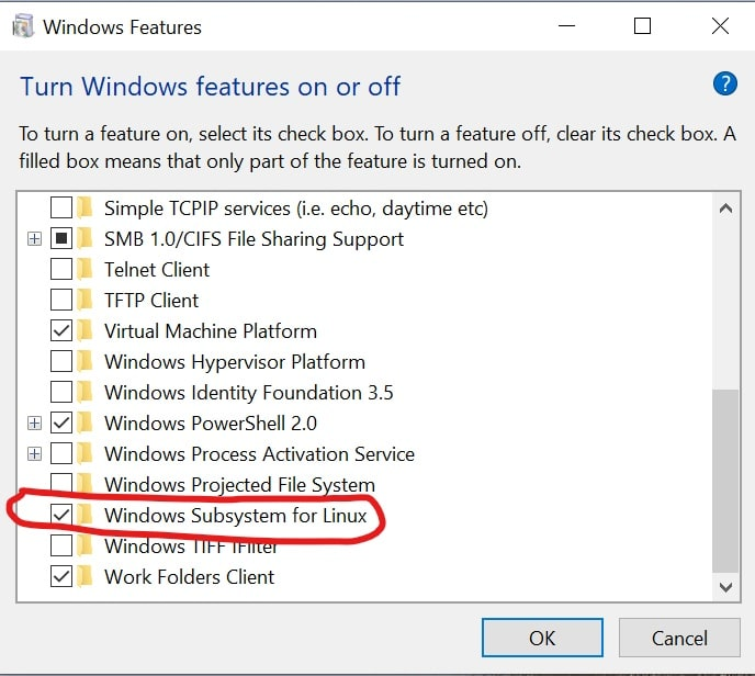 Checks the WSL option.