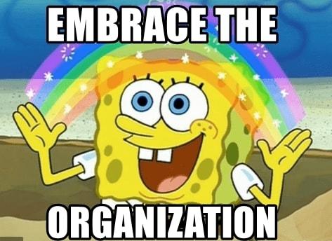 embrace organization