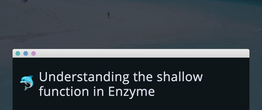 Cover image for Understanding the shallow function in Enzyme