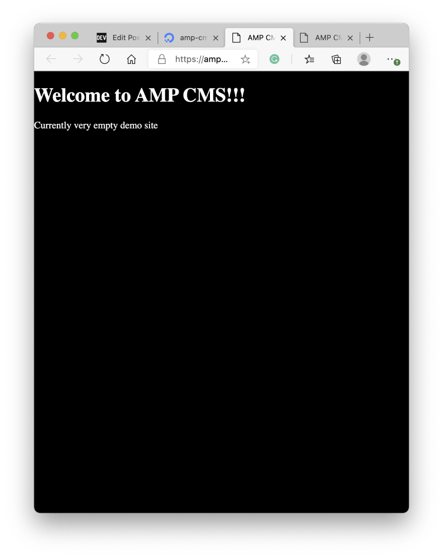 Welcome to AMP CMS Rendered