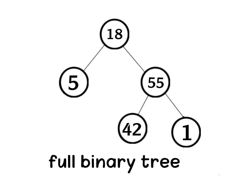 full binary tree in data structure Aya Bouchiha