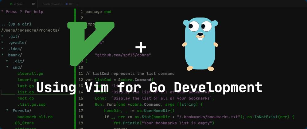 Cover image for Using Vim for Go Development