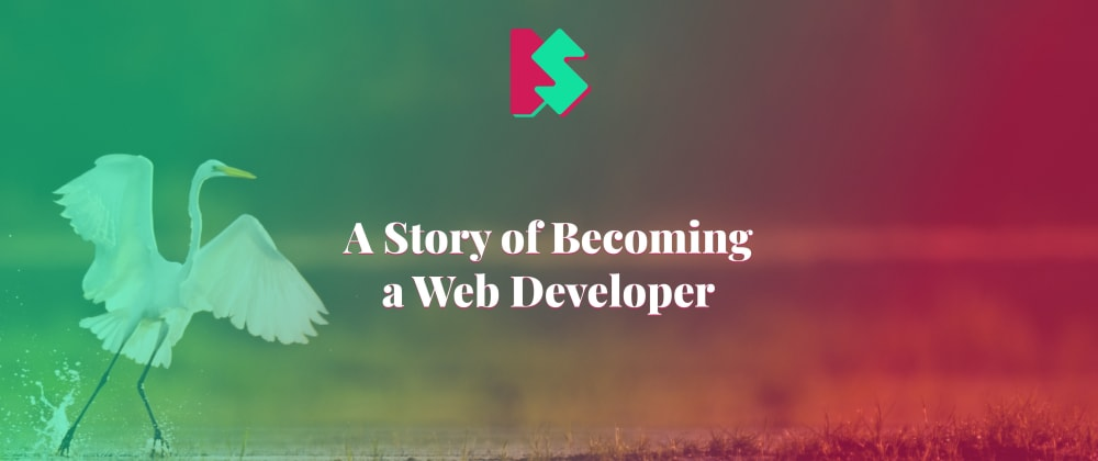 Cover image for A Story of Becoming a Web Developer