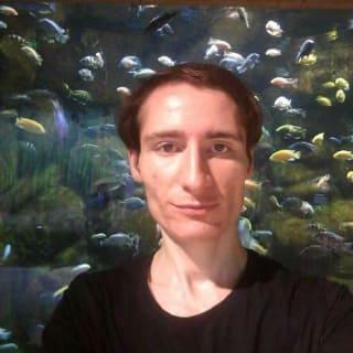 Moein Mavini profile picture