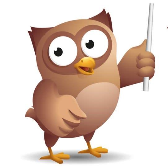 wise owl tutorials