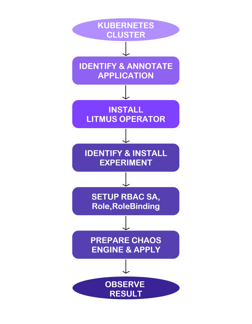 Litmus Flow Diagram