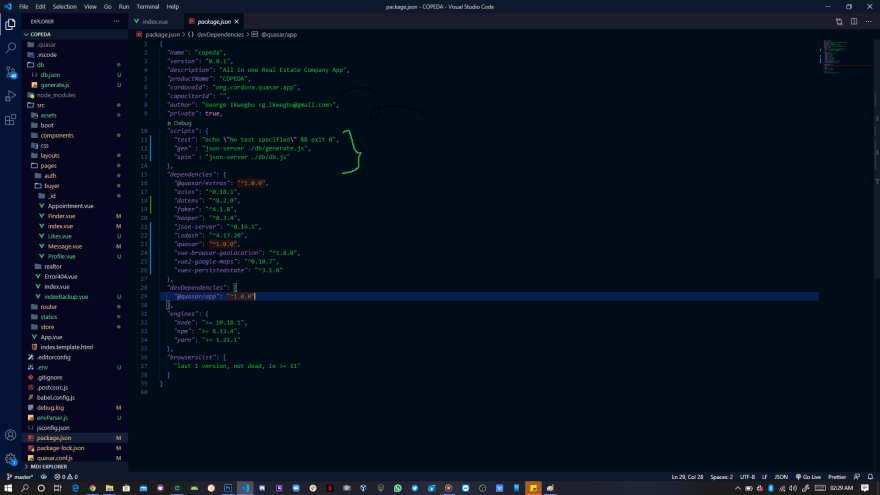 Package.json config