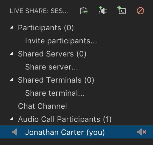 Live Share Audio