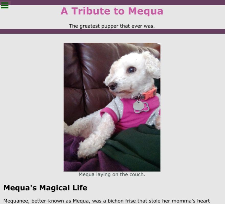 Screenshot of Mequa tribute page