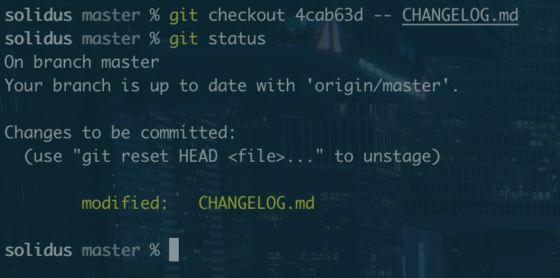 A terminal screenshot showing the output of the above commands on the Solidus project