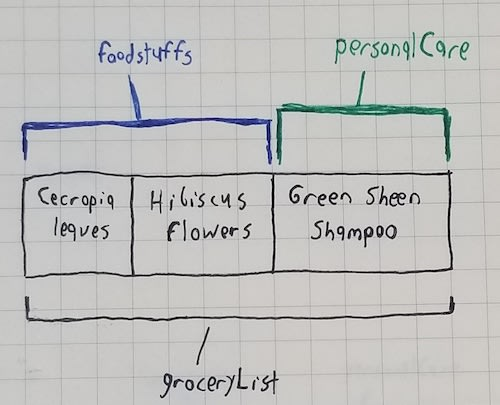 "An array of the strings ""Cecropia leaves"", ""Hibiscus flowers"", and ""Green Sheen shampoo"". There is a black bracket labeled ""groceryList"" below the array, a blue bracket labeled ""foodstuffs"" above the array's first two items, and a green bracket labeled ""personalCare"" above the array's third item"